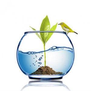 aquamag מערכת טיהור מים ומסנני מים המעשירים את המים במגנזיום